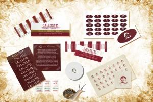 CALLISTO COSMETICS -SYNERGIES - SNAIL COCRETION Αυτοκόλλητα χαρτιού και μεταξοτυπίας